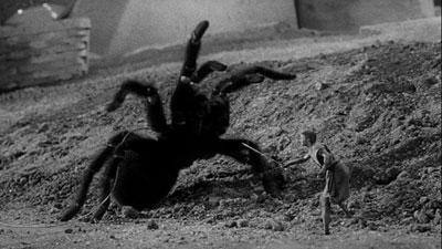 Scott Carey versus the Spider